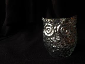 silverowl1
